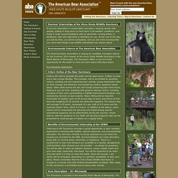 Summer Internships at the Vince Shute Wildlife Sanctuary - The American Bear Association