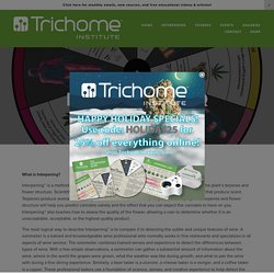 Interpening FAQ — Trichome Institute