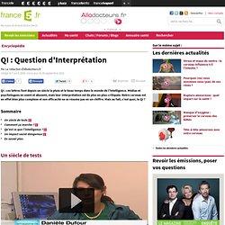 QI : Question d'Interprétation
