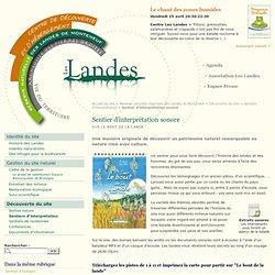 Sentier d'interprétation sonore - Les Landes en forêt de Brocéliande, Bretagne