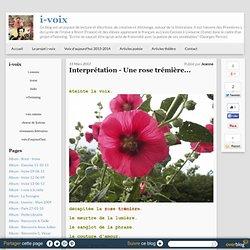 Interprétation - Une rose trémière...