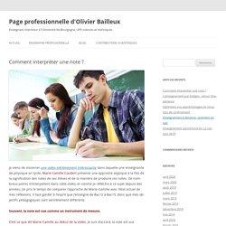 Page professionnelle d'Olivier Bailleux