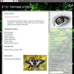 5.º G - Interrogar a Ciência: Papilio machaon