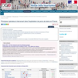 Principaux opérateurs intervenant dans l'exploitation de parcs de loisirs en France