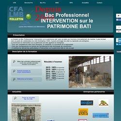 Bac Pro Intervention sur le Patrimoine Bâti