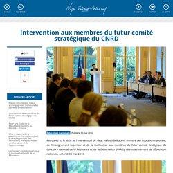 Intervention aux membres du futur comité stratégique du CNRD