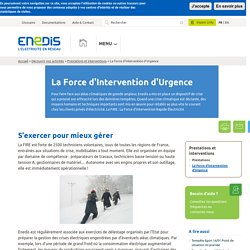 La Force d'Intervention d'Urgence