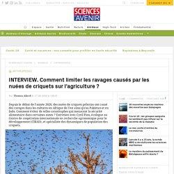SCIENCES ET AVENIR 17/08/20 INTERVIEW. Comment limiter les ravages causés par les nuées de criquets sur l'agriculture ?