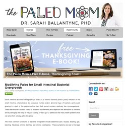 Modifying Paleo for Small Intestinal Bacterial Overgrowth - The Paleo Mom