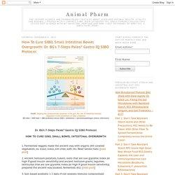Animal Pharm: How To Cure SIBO, Small Intestinal Bowel Overgrowth: Dr. BG's 7-Steps Paleo* Gastro IQ SIBO Protocol