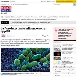 La flore intestinale influence notre appétit- 4 janvier 2015