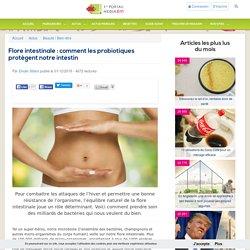 Flore intestinale : comment les probiotiques protègent notre intestin