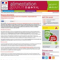 ALIMENTATION_GOUV_FR 04/10/13 La théobromine contenue dans les croquettes, responsable de l'intoxication de chiens