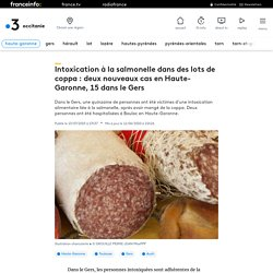 Intoxication à la salmonelle dans des lots de coppa : deux nouveaux cas en Haute-Garonne, 15 dans le Gers