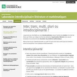 Inter, trans, multi, pluri ou intradisciplinarité ? - Laboratoire interdisciplinaire littérature et mathématiques