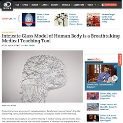 Intricate Glass Model of Human Body is a Breathtaking Medical Teaching Tool