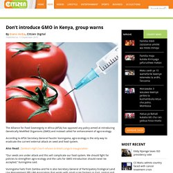 Don't introduce GMO in Kenya, group warns