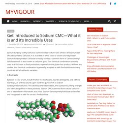 Get Introduced to Sodium CMC—What it is and it's Incredible Uses - MYVIGOUR