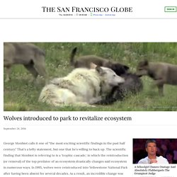 Wolves Introduced To Park To Revitalize Ecosystem