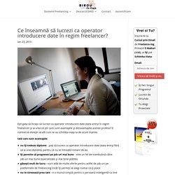 Ce înseamnă să lucrezi ca operator introducere date în regim freelancer? - Birou pe Plaja