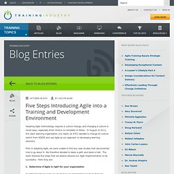 Five Steps Introducing Agile into a Training and Development Environment
