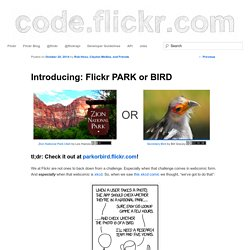 Introducing: Flickr PARK or BIRD