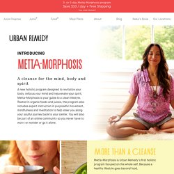 Introducing Metta-Morphosis Offer