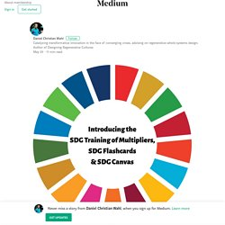 Introducing the SDG Training of Multipliers, the SDG Flashcards and the SDG Canvas