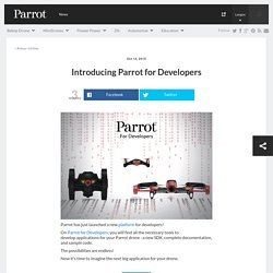 Introducing Parrot for Developers