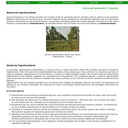 INRA MONTPELLIER – Agroforesterie.