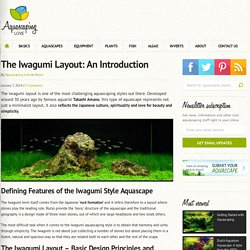 The Iwagumi Layout: An Introduction