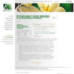 capital-immateriel-et-financier- Capital immatériel & RSE