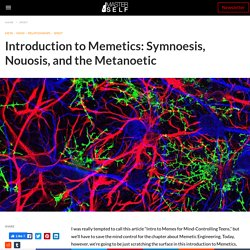 Introduction to Memetics: Symnoesis, Nouosis, and the Metanoetic