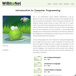WiBit.net: Introduction to Computer Programming
