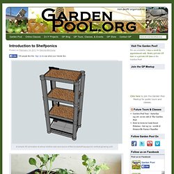 Introduction to Shelfponics | Garden Pool