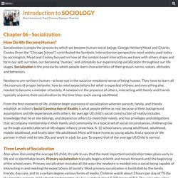 Introduction To Sociology : 06 Socialization