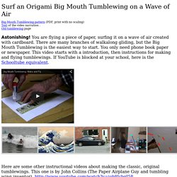 introduction to the tumblewing