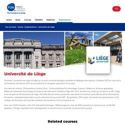Introduction à la culture vidéoludique