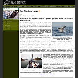 """L'intrusion du navire baleinier japonais pourrait créer un """"incident diplomatique"""""""