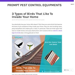 Install Bird Shock Flex Track System to Keep Birds Away