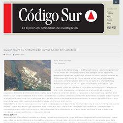 Invade calera 60 héctareas del Parque Cañón del Sumidero