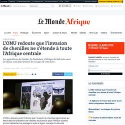 L'ONU redoute que l'invasion de chenilles ne s'étende à toute l'Afrique centrale