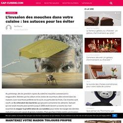 L'invasion des mouches dans votre cuisine : les astuces pour les éviter