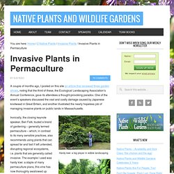 Invasive Plants in Permaculture