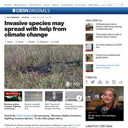 CBS NEWS 28/10/18 Invasive species may spread with help from climate change