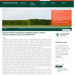 Oceňování dřevin: Inventarizace a klasifikace zeleně – profesní příprava a uplatnění v praxi, Jaroslav Machovec - Zahrada-Park-Krajina, zahradní architektura, krajinná tvorba, arboristika