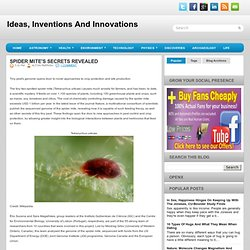 Spider Mite's Secrets Revealed