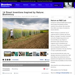 14 Smart Inventions Inspired by Nature: Biomimicry: Nature as R&D Lab