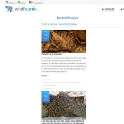 Wikifaunia, tu enciclopedia de animales