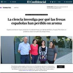 EL CONFIDENCIAL 27/06/14 La ciencia investiga por qué las fresas españolas han perdido su aroma